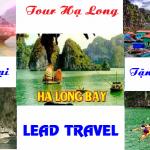 Tour-du-lich-Ha-Long-1-ngay-khuyen-mai
