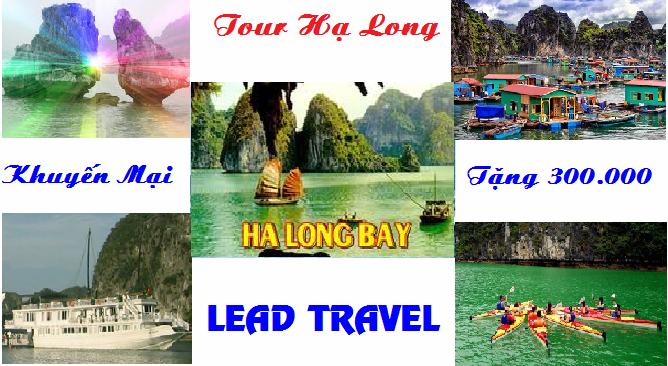 Tour du lịch Hạ Long 1 ngày Khuyến Mại
