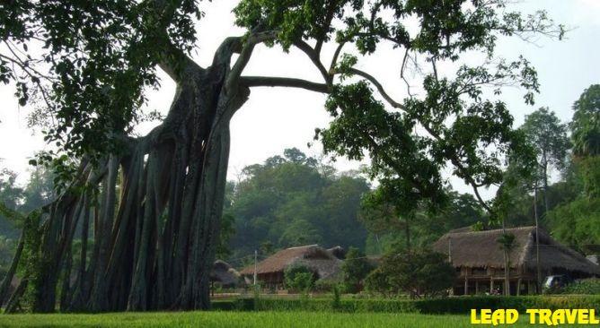 Du-lich-Tuyen-Quang