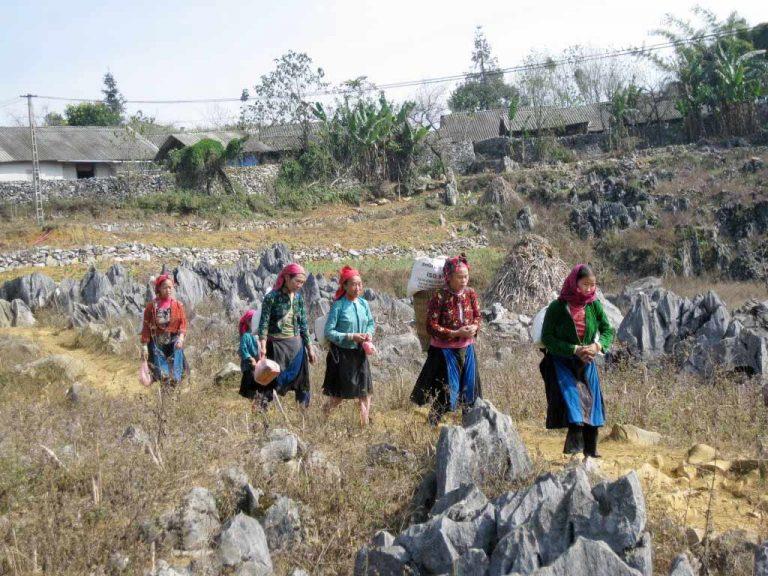 du-lich-dong-van-ha-giang (2)