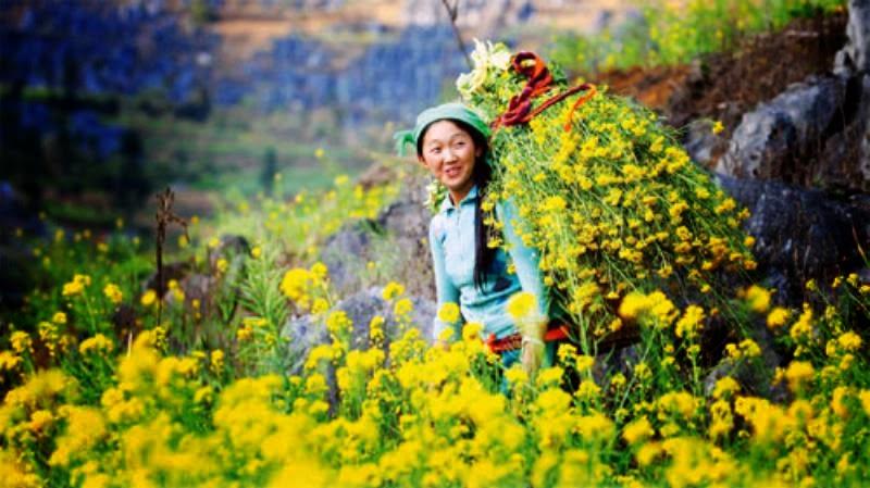 Du lịch Hà Giang mùa nào đẹp nhất? Thời điểm đẹp nhất đi du lịch Hà Giang-2