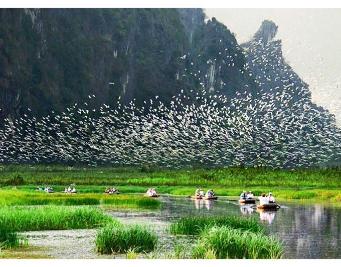 Gợi ý tour Ninh Bình tự túc 1 ngày giá rẻ