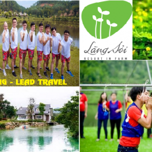 Tour du lịch Làng Sỏi in Farm Resort 1 Ngày Team Building