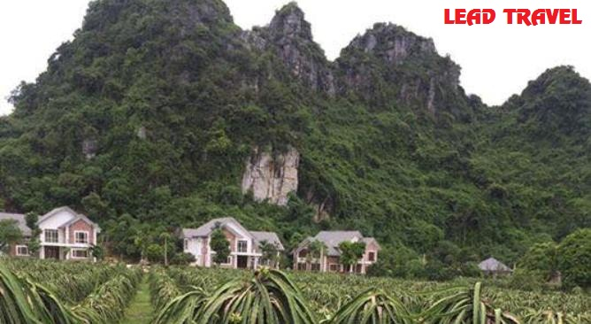 biệt thự Làng Sỏi in Farm Resort Hòa Bình