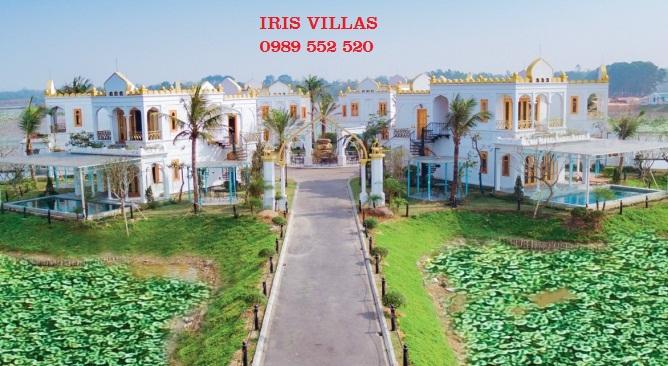 biệt thự đảo hoa phương đông biệt thự IRIS Vườn Vua Resort