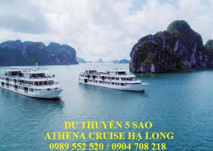 Athena Cruise Hạ Long