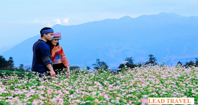 Hướng dẫn du lịch Hà Giang