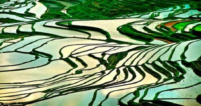 Hoàng Su Phì mùa nước đổ