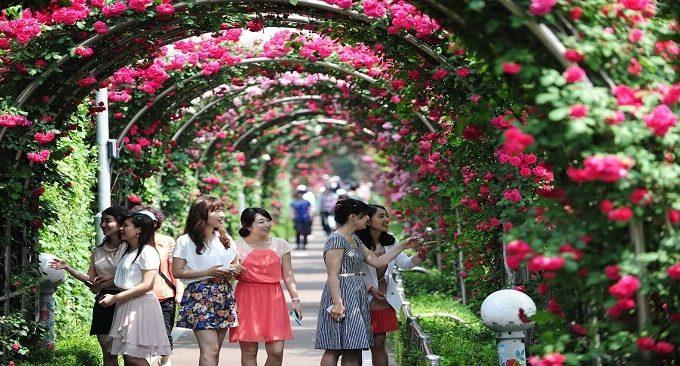 mùa hè đi chơi đâu ở Hà Nội