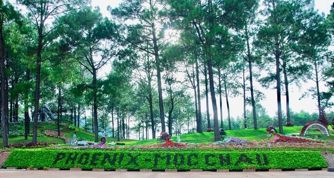 Phoenix Mộc Châu Resort