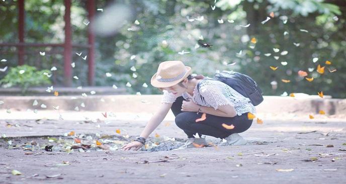 du lịch Cúc Phương ngắm bướm