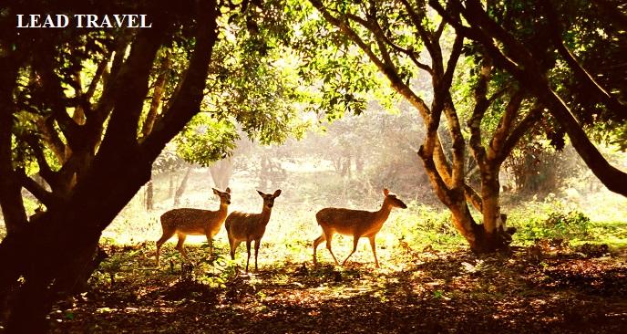khu du lịch sinh thái Ninh Bình