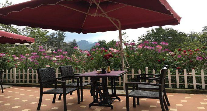 không gian cafe sân vườn