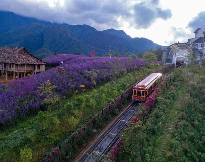 tàu hỏa Mường Hoa Fansipan Legend