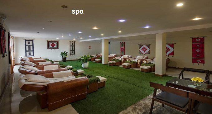 khách sạn sapa freesia hotel