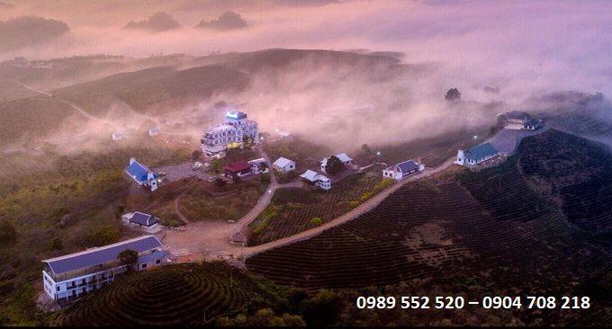 khách sạn Mộc Sương được bao bọc bởi những đồi chè xanh mát