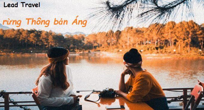 check in Rừng thông bản Áng Mộc Châu