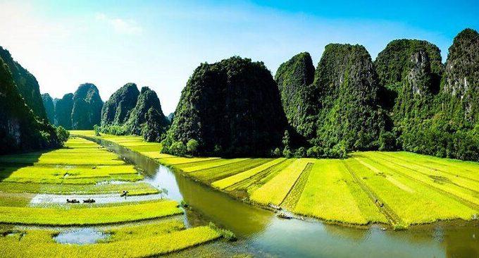 du lịch Ninh Bình mùa lúa chín