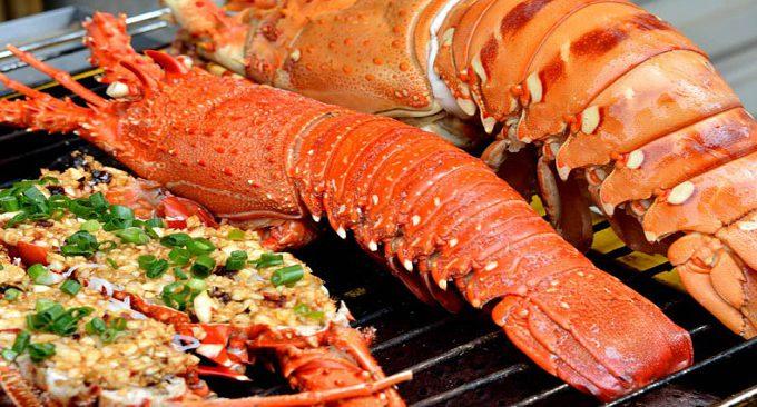 thưởng thức hải sản ở đảo Cát Bà
