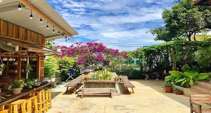 không gian vườn cây xanh mát