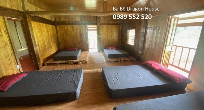 ba bể dragon house